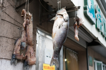 Drying Fish Outside a Wet Market